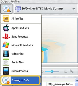 Select option to WMV to DVD