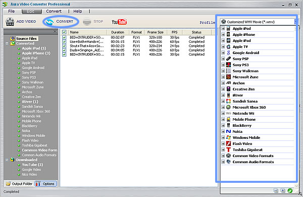 Convert YouTube to MPEG4 with Aura Video Converter